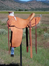 Rough Out Saddles: Image 1
