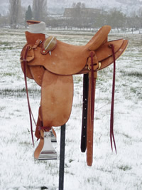 Rough Out Saddles: Image 2