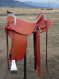 Stamped Saddles : Image 1