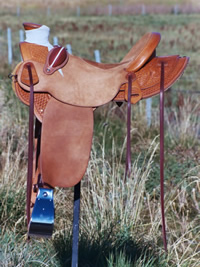 Stamped Saddles : Image 6