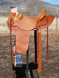 Stamped Saddles : Image 7