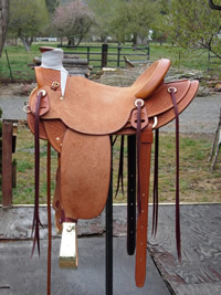 Stamped Saddles : Image 9